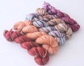 Swindern Sock Hand Dyed Mini-Skein Set - Variegated