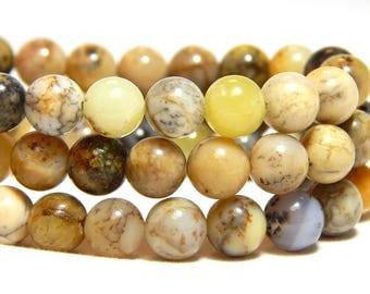 6mm Moss Agate, 6mm Agate Gemstones, Natural Stone Beads, Yellow Moss Agate, 6mm Moss Agate, 6mm Earthy Gemstones, 6mm Gemstones,  B-9C