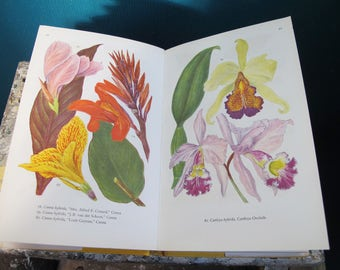 Vintage hard back book - Indoor Plants in Colour. Fabulous illustrations, with 127 pages of full colour plates.