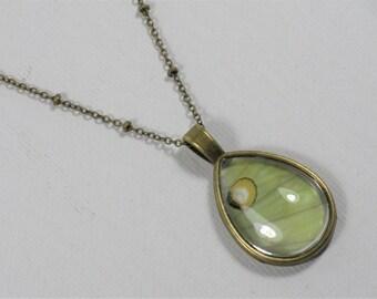 Luna Moth Wing Teardrop Pendant Necklace Antique Bronze Jewelry