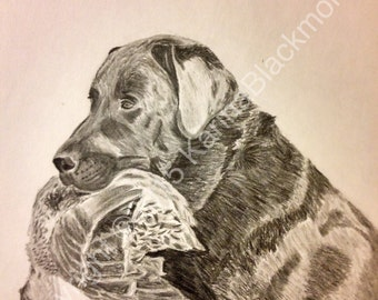 """Hunting Dog With Duck - """"Man's Best Friend"""" - Retriever"""