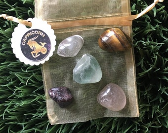 Capricorn Zodiac Healing Crystals Pouch - Earth sign - Birthday Gifts - December - January  -  tumbled crystals - Gifts