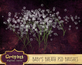 Baby's Breath Clipart, Photoshop Brush Pack, white wedding floral bouquet graphics, white flower digital instant download