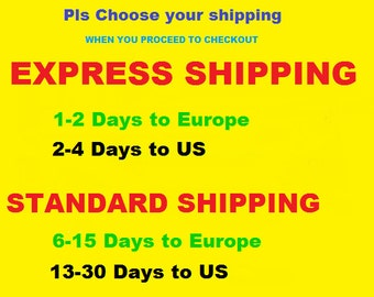 EXPRESS SHIPPING   (Please Don't buy this item)