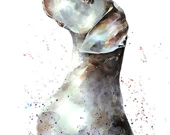 "That Weimaraner Look"" Print Watercolour A3 (30*40cm/16*12 Inches)"