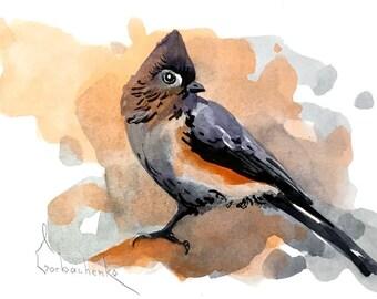 Bird Watercolor Painting Art Print, Bird Art Watercolour Painting Art, Wall Art 060