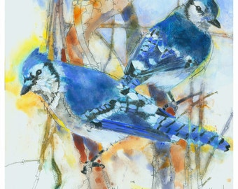 Original bird art, Bluejay, 10 x 10 - giclee print from original