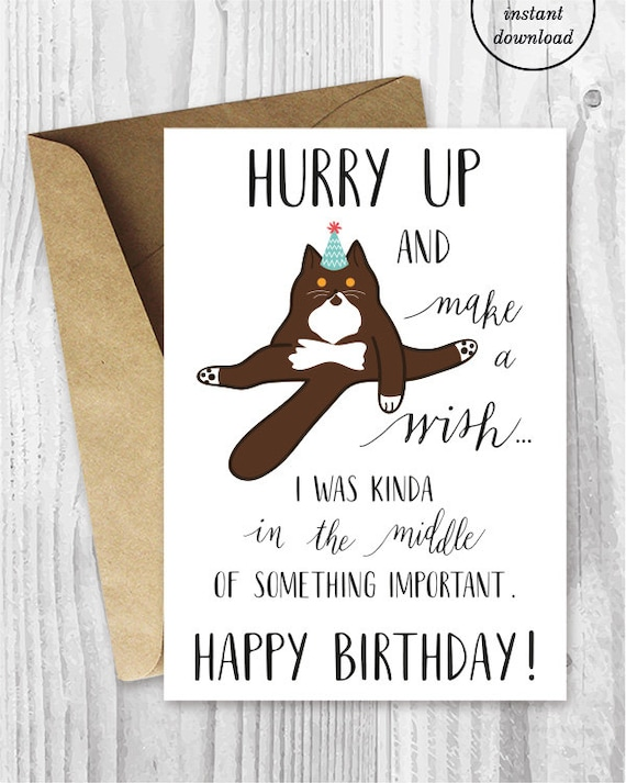 Funny Birthday Printable Cards Funny British Shorthair Cat – Funny Birthday Printable Cards