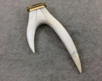 """4.25"""" White/Ivory Long Double Antler Tusk Shaped Natural Ox Bone Pendant with Dotted Gold Cap - Measuring 52mm x 110mm - (TR425WHDAT)"""
