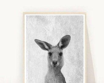 Kangaroo Print,  Kangaroo Wall Art, Printable Art, Printable Kangaroo, Nursery Wall Art,  Home Decor, digital Download, wall Decor
