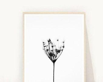 Dandelion Wall Art, Printable Art, Minimalist Print, Dandelion Seed Print,  Wall Art, Black And White Art, Wall Decor, digital Download