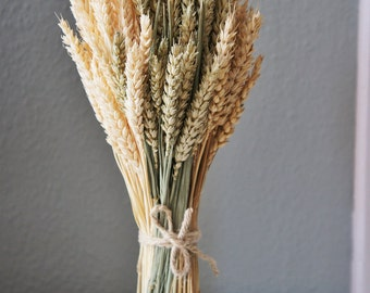 3 in 1 Dried wheat bunch, 3 colors wheat, floral arrangement | Bunch of  dried wheat |  dried flowers, wedding decor | wheat bouquet