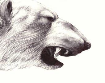 Polar Bear Print - Ballpoint Pen (5x7)