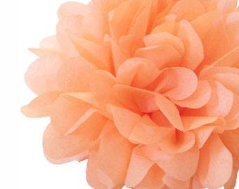 Peach Tissue Paper Pom Pom's