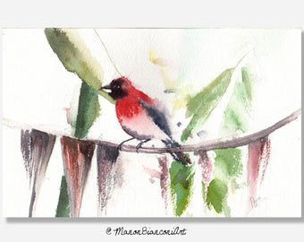Original watercolor-Red and tropical bird-illustration bird-Animal Art-Naturalist painting-Canvas-Artwall-Decoration-Gift for her-Birthday