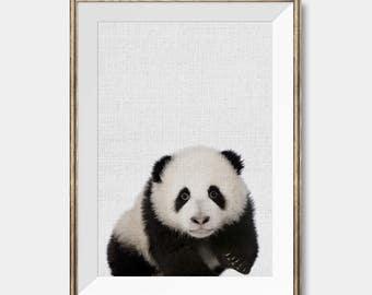 Bear Print, Panda Print, Panda Bear,Printable Nursery Animal,Baby Room Decor,Panda Photo,Photography,Kids Room Wall Art,Safari Animal Poster