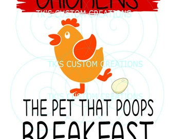 chickens - a pet that poops breakfast