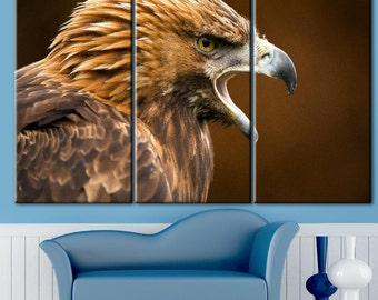 Hawk, hawk on the hunt, Hawk canvas print, brown hawk, bird of prey art, hawk on canvas, predator, hischnik picture, carnivorous bird art