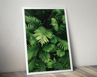 Fern Print, Tropical leaf print, palm leaf print, leaf print, tropical print, botanical decor, greenery, botanical art, botanical leaf print