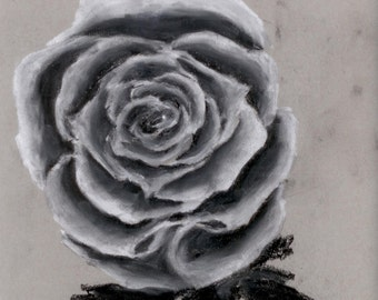 Original Artwork Pastel - Rose