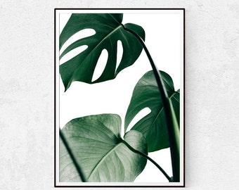 Monstera Leaf Print, Botanical Art, Scandinavian Wall Decor, Minimalist Poster, Plant Wall Art, Palm Leaf, Instant Download, Modern Home.