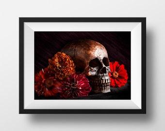 "Skull Wall Art, Photographic & Digital Art Print, Zinnias, Dia de los Muertos, Red, Orange, Black, Creepy Picture | ""Day of the Dead"""
