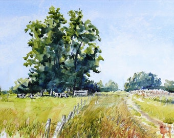 Summer Elms at Bruthen, Original painting, pen and wash, unframed, landscape