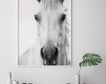 Horse Wall Art, Horse Print, Horse Art, Printable Wall Art, Digital Download Prints, Animal Wall Art, Horse Photo Print, Printable Horse