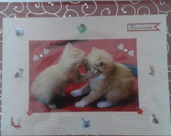 Feline tenderness