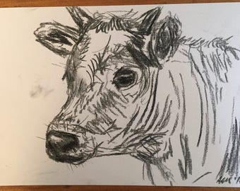 Charcoal sketch of a cow (original)