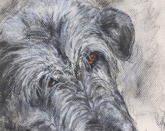 Irish Wolfhound Art Original Pastel Drawing By Cori Solomon