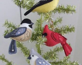 Fancy Birds