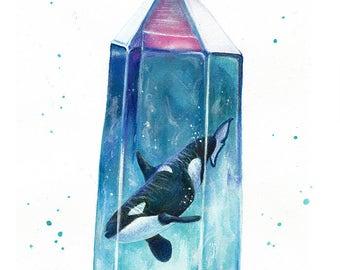 Aura cetus - orca crystal watercolor art print