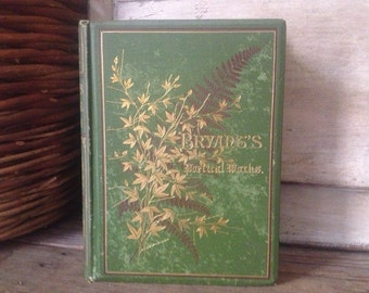 1878 Bryants Poetical Works Hardcover Book, Poems, Poetry, Aesthetic Movement Cover, Illustrated by Engravings