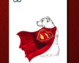 HERO, Staffordshire Bull Terrier Greetings card illustration print