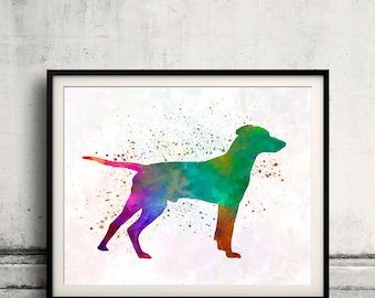 Hellenic Hound in watercolor 01 - Fine Art Print Poster Decor Home Watercolor Illustration Dog - SKU 2514