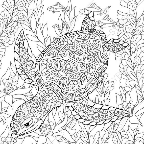 Adult Coloring Pages Turtle Zentangle Doodle Coloring Pages