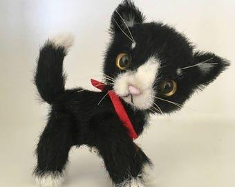 Tula the Tuxedo Cat