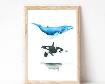 extra large wall art, nursery art, whale, bedroom decor, whale print, bedroom wall decor, art prints, nursery art, boys room decor