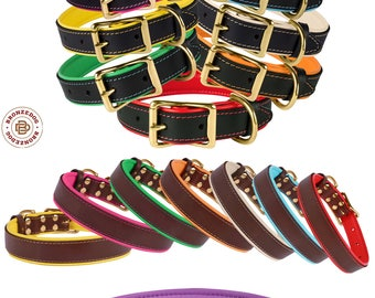 Leather Dog Collar Brass Buckle Soft Padded Pink Red Blue