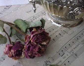 Vintage Silver Plate Compote. Victorian Elegance. Lion Head Handles. Scalloped w Grape Motif. Wedding