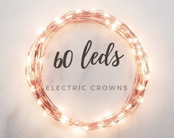 Minimal Decor, Home Decor, Silver Wire, Twinkle Lights, Home Decorations, Micro Led Lights only *no terrarium