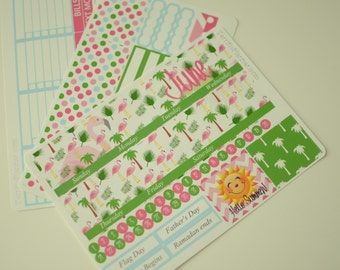 June Monthly Spread Kit Planner Stickers Removable Matte  or Glossy Stickers