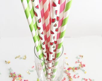 Watermelon Paper Straws Tutti Fruity Party Pineapple Party One in a Melon Party Watermelon Party Summer Party Straws Fruit Picnic Party