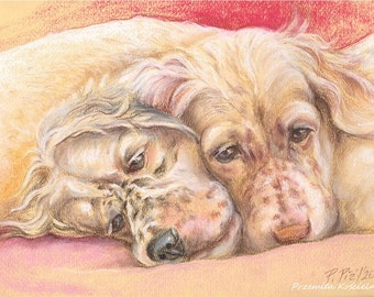 Custom pet portrait Pastel drawing from photos Personalized gift for pet lovers Hand drawn Dog portrait on request Custom Cat portrait