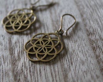 Pair of little pair of earrings