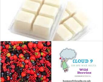 Wild Berries Soy Wax Melt