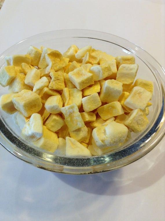 Freeze Dried Mango No additives No gluten no soy no sulfites. GMO Free Survival food, camping, hiking