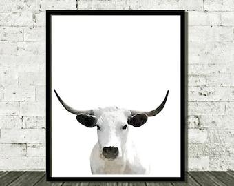 Cow Print, Cow Wall Art, Farm Animal Print, Nursery Farm Animal, Nursery Decor, Printable Poster, Digital Download, Wall Art