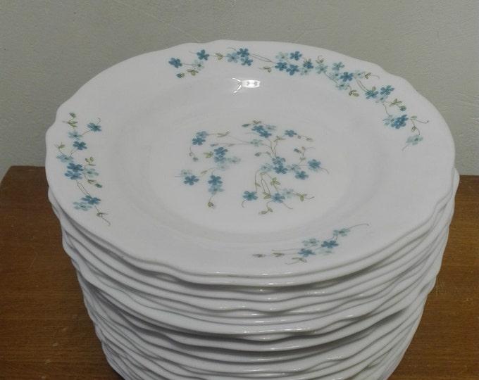 Arcopal Myosotis (Veronica) Soup or dessert plates (29cm)